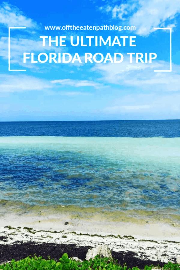 ultimate florida road trip pin