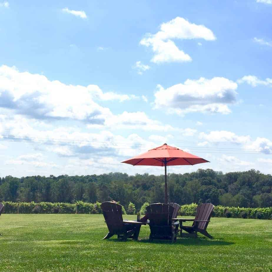 back patio views from a north carolina winery