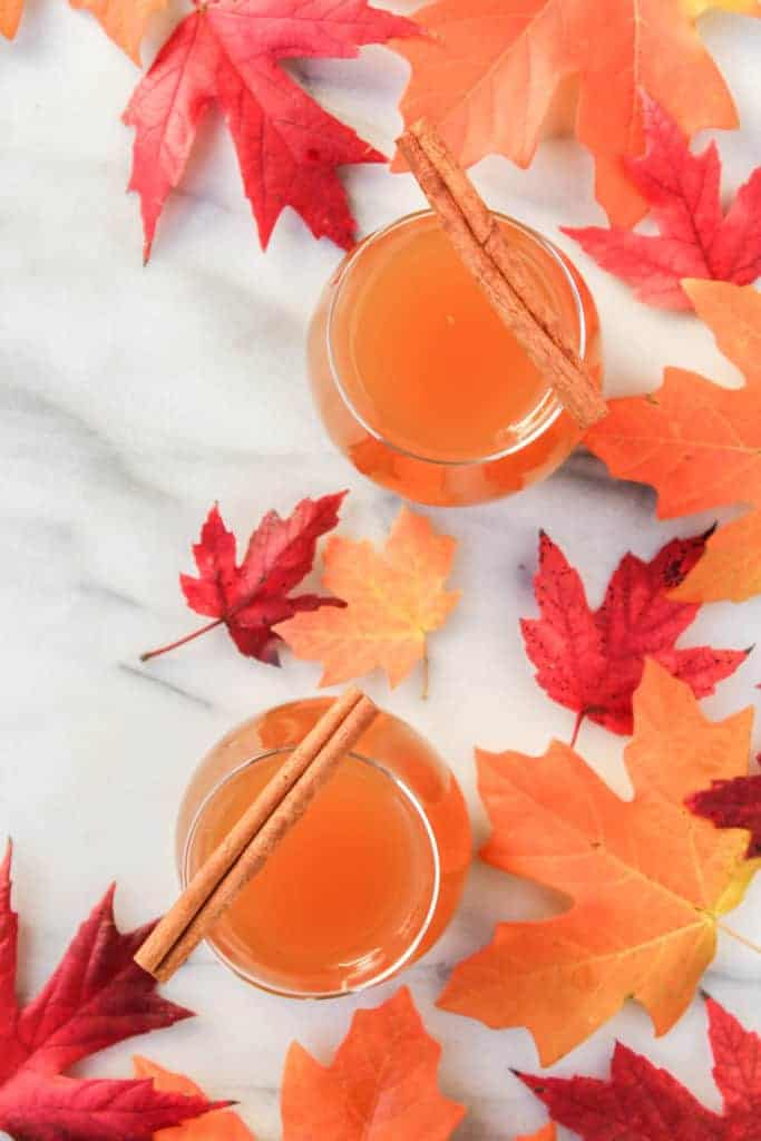 overhead shot of two glasses filled with whiskey and apple cider topped with two cinnamon sticks and surrounded by orange and red fall leaves