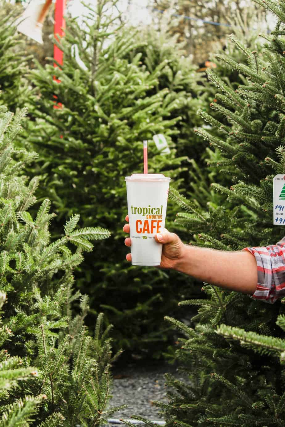 holiday bucket list picking the perfect christmas tree