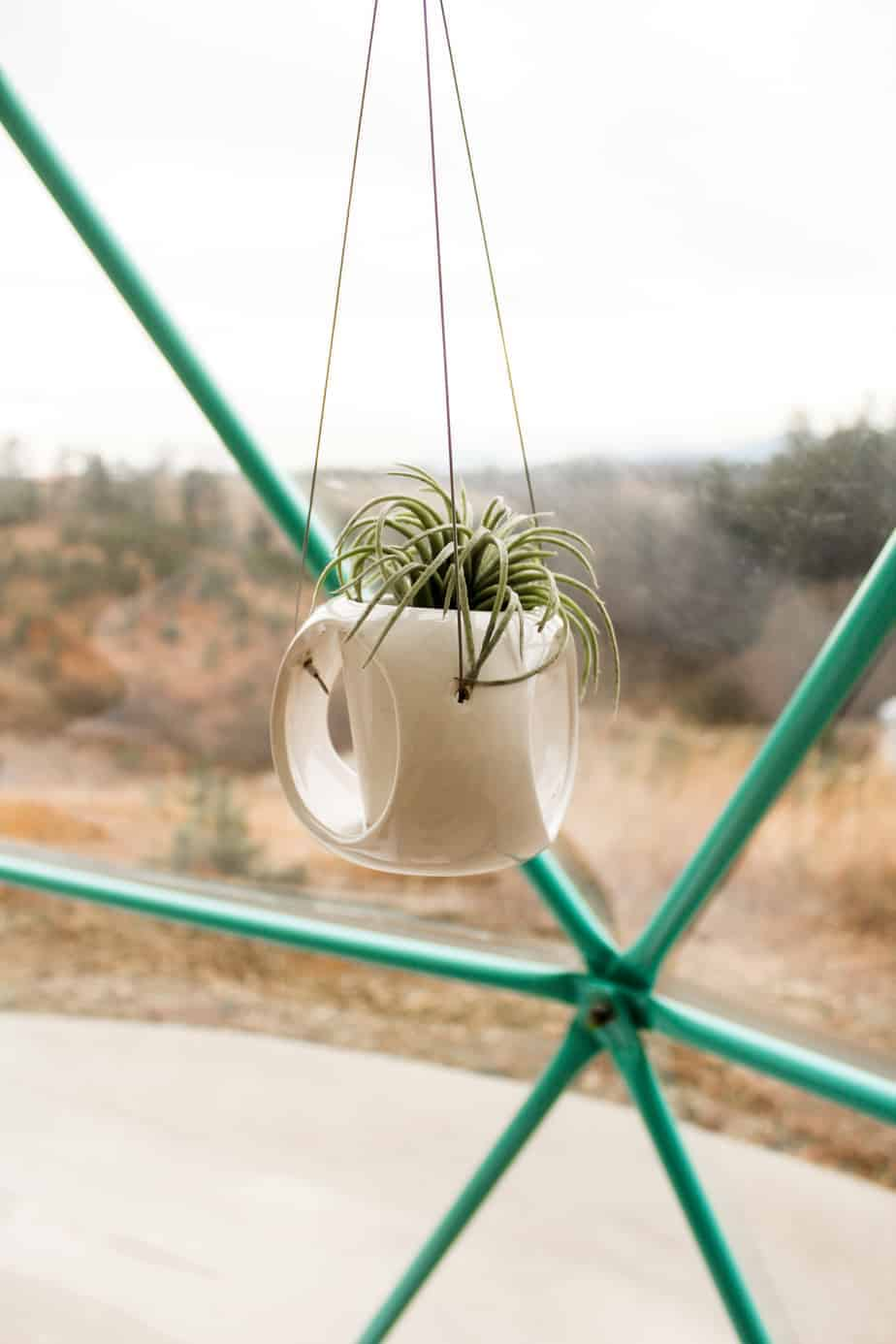 hanging plants at asheville glamping
