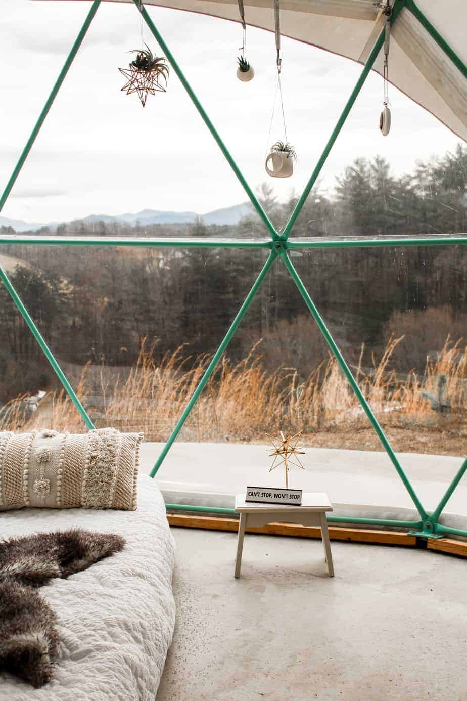 hanging plants inside asheville glamping dome 2