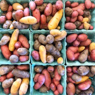 mini colorful potatoes at the charlotte regional farmers market