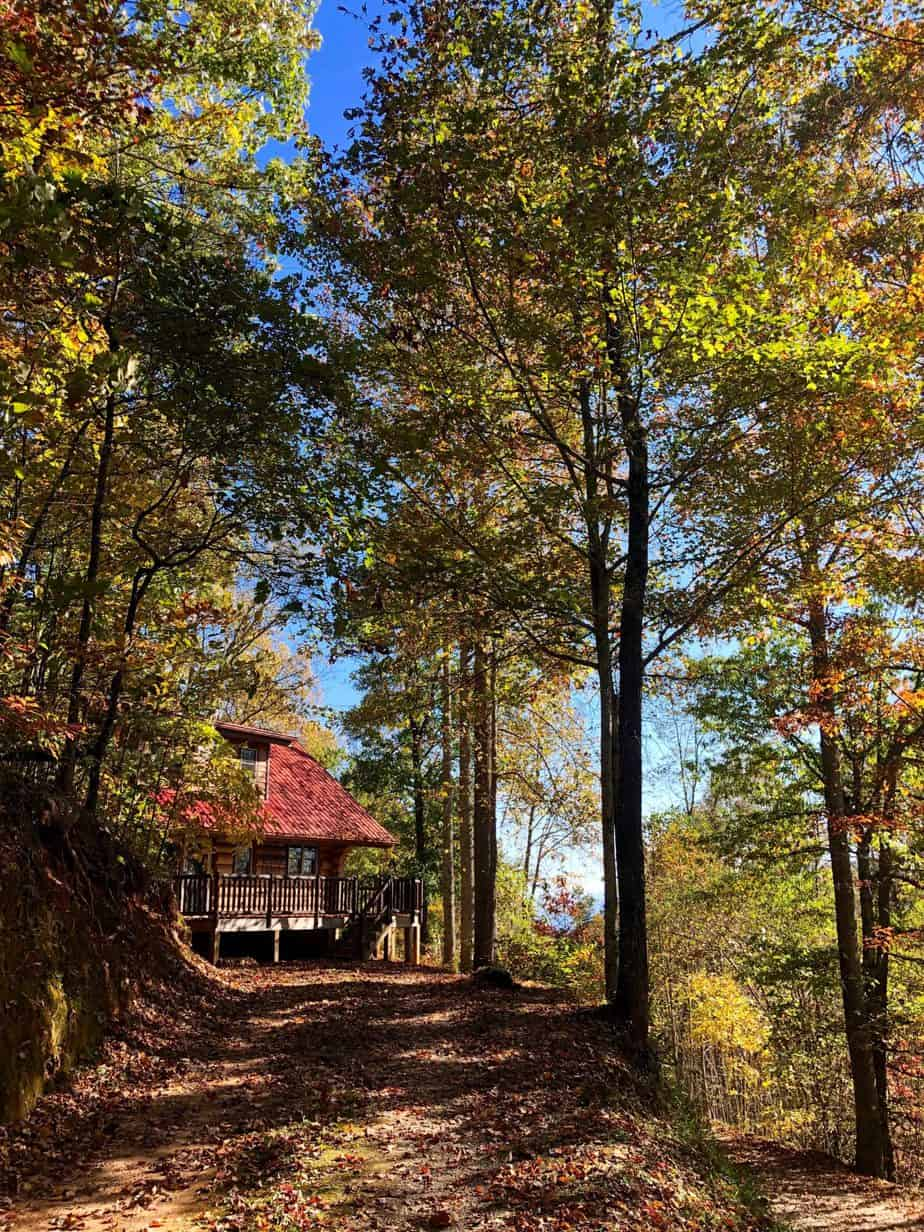 wood log cabin with red roof in the woods