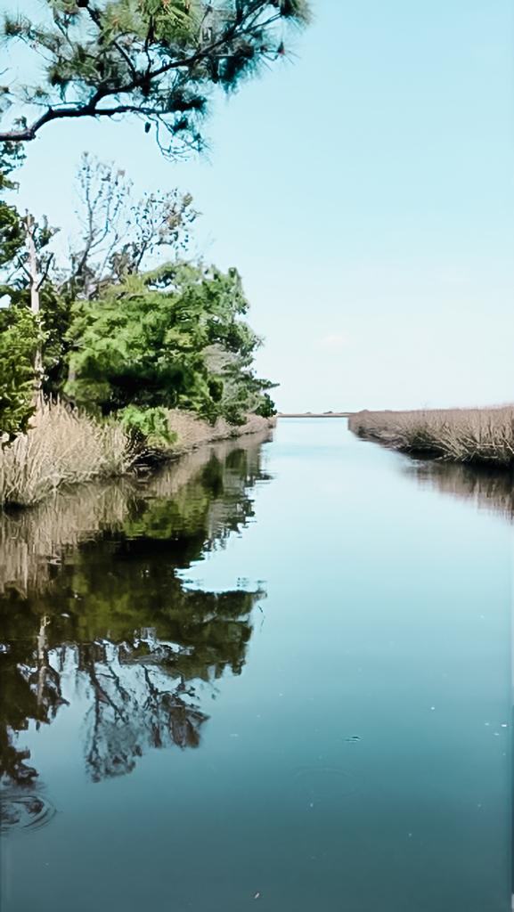 crystal clear blue water and coastal marsh near beaufort nc